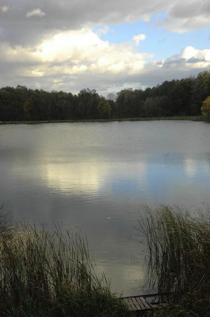 Фото Виталия Бабенко: один из прудов Дидоровского каскада