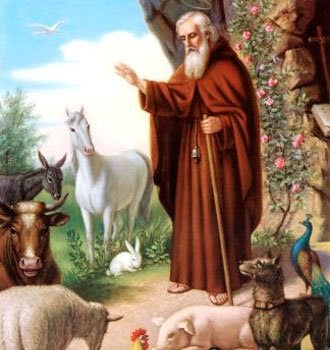 San Antonio Abad patrono de los animales