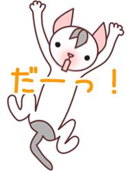 飛びつく仔猫