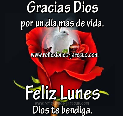 Feliz Lunes - Dios te bendiga