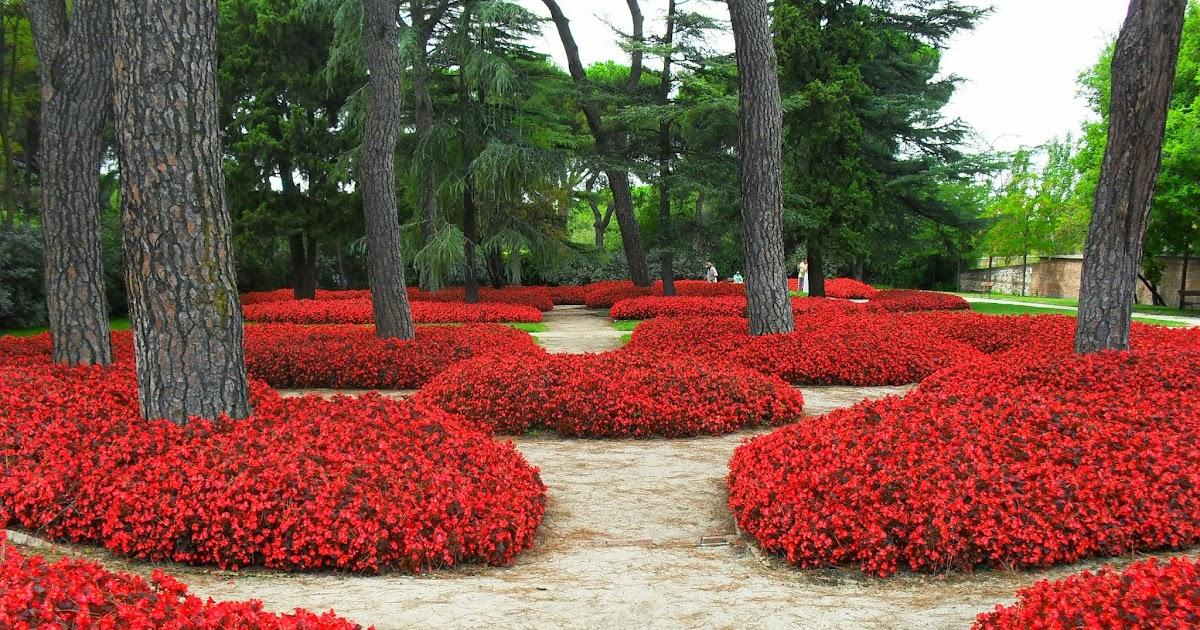 Arte y jardiner a dise o de jardines jardines de madrid - Trabajo de jardineria en madrid ...