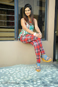 Neha deshpande Photos at Dil Diwana press meet-thumbnail-7