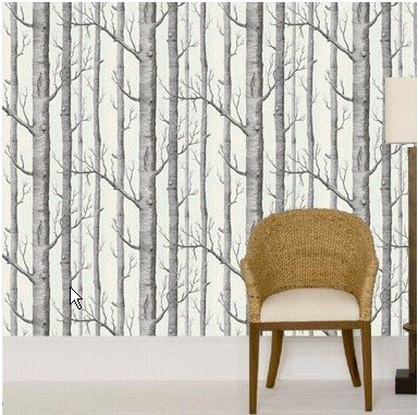 wednesday walls silver birch wallpaper from cole and sons