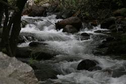 El murmullo del agua en el jardín de piedra