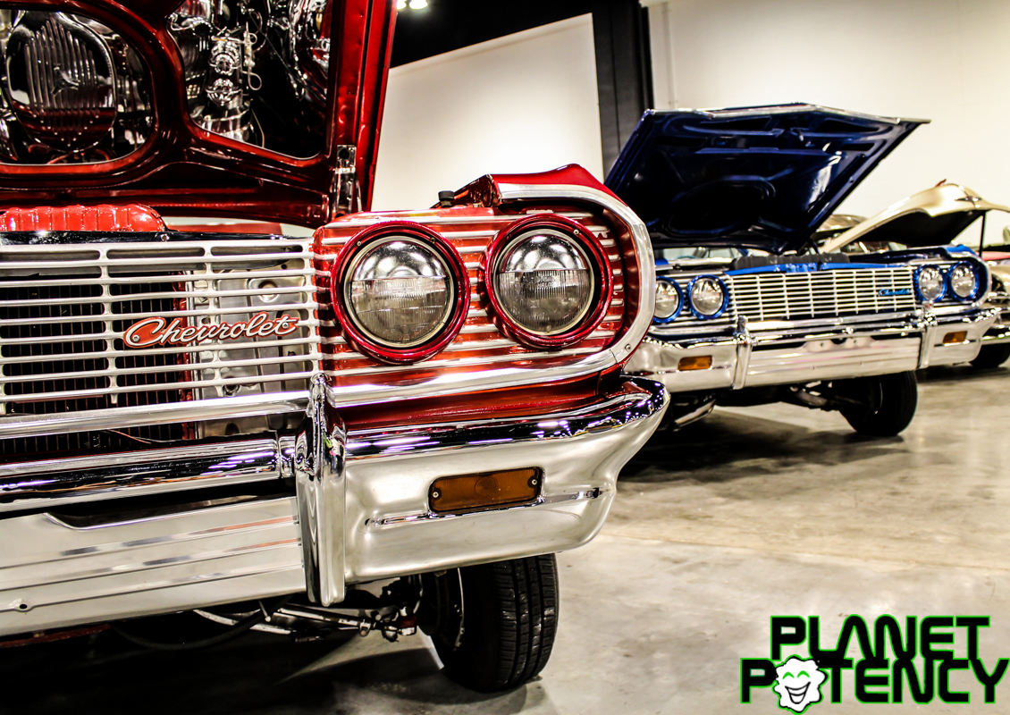 Lowriders Obsessions CC