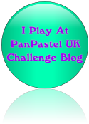 PanPastel UK Challenges