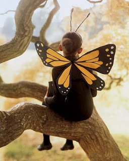 child dressed as butterfly in tree halloween Martha Stewart Liz and Pip Ltd