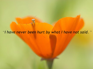 """I have never been hurt by what I have not said. """