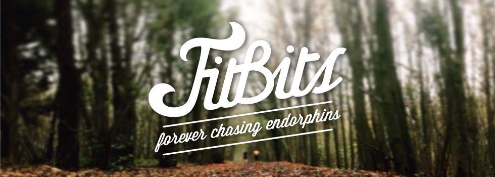 FitBits - fitness for fun and wellbeing