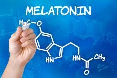 """健康長寿をもたらす天然の薬 """"メラトニン"""""""