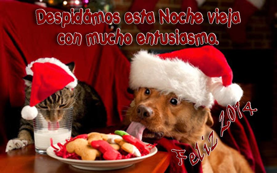 Mensajes de noche vieja navidad y a 241 o nuevo 2014 para compartir