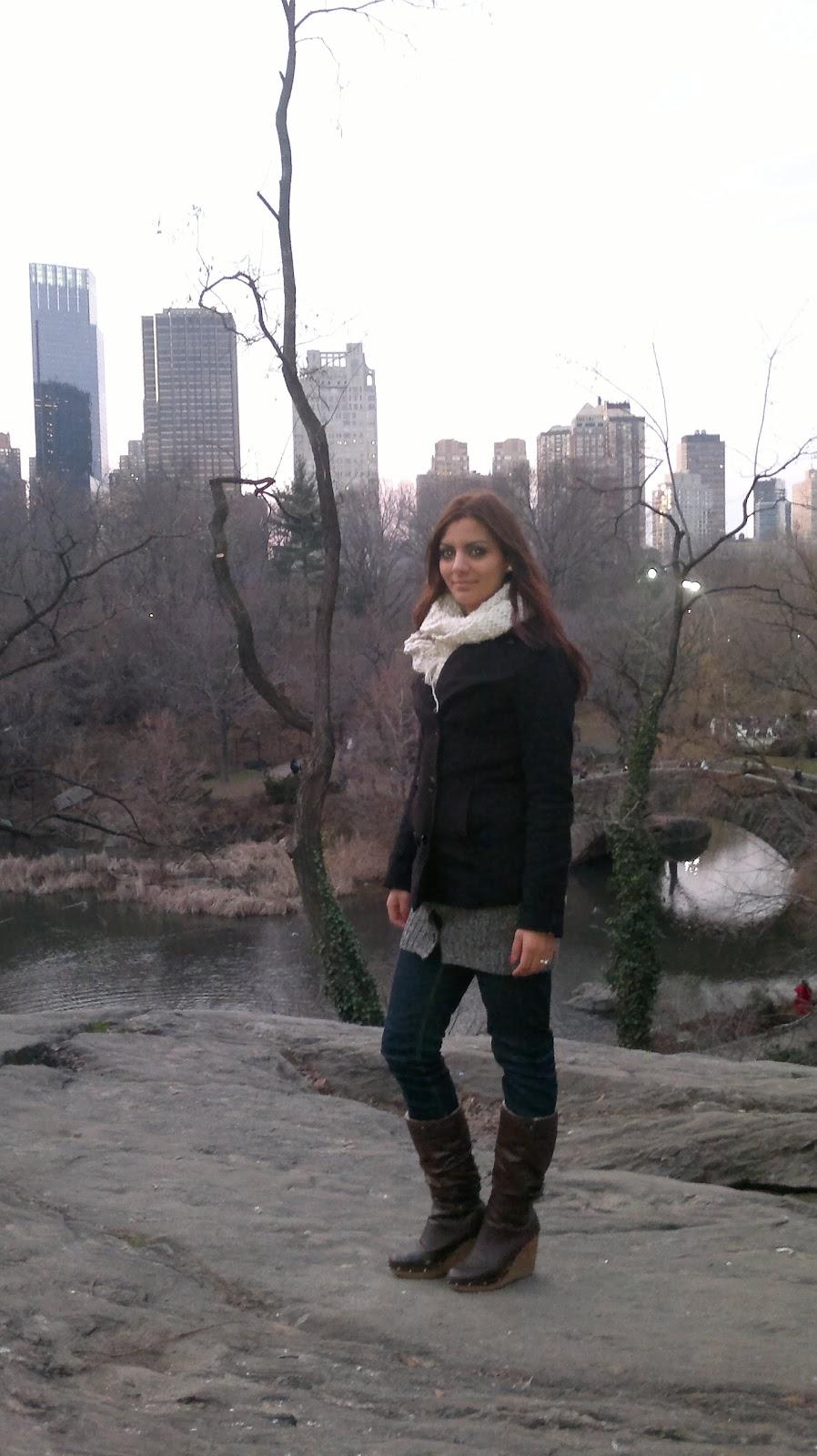 weihnachten 2011 in new york weihnachtsspaziergang im. Black Bedroom Furniture Sets. Home Design Ideas