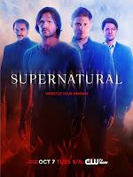 ver Supernatural 14X13 online