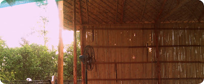 Thai Kick Boxing Style Roof