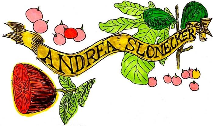 Andrea Slonecker