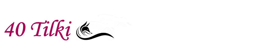 40 Tilki