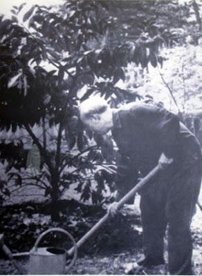 Bác tự cuốc đất, trồng cây, tưới nước xung quanh nhà sàn