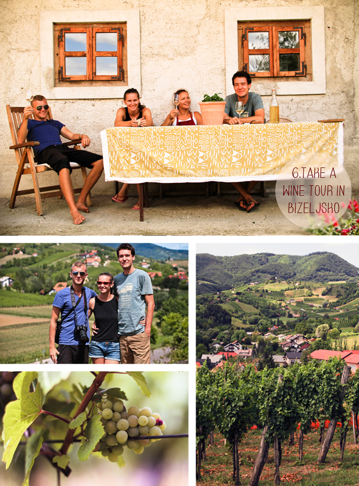Wine tour Bizeljsko Slovenia, 10 things to do in Slovenia, Slovenia travel guide, Bizeljsko region, The Lower Sava Valley, Berkovic wine