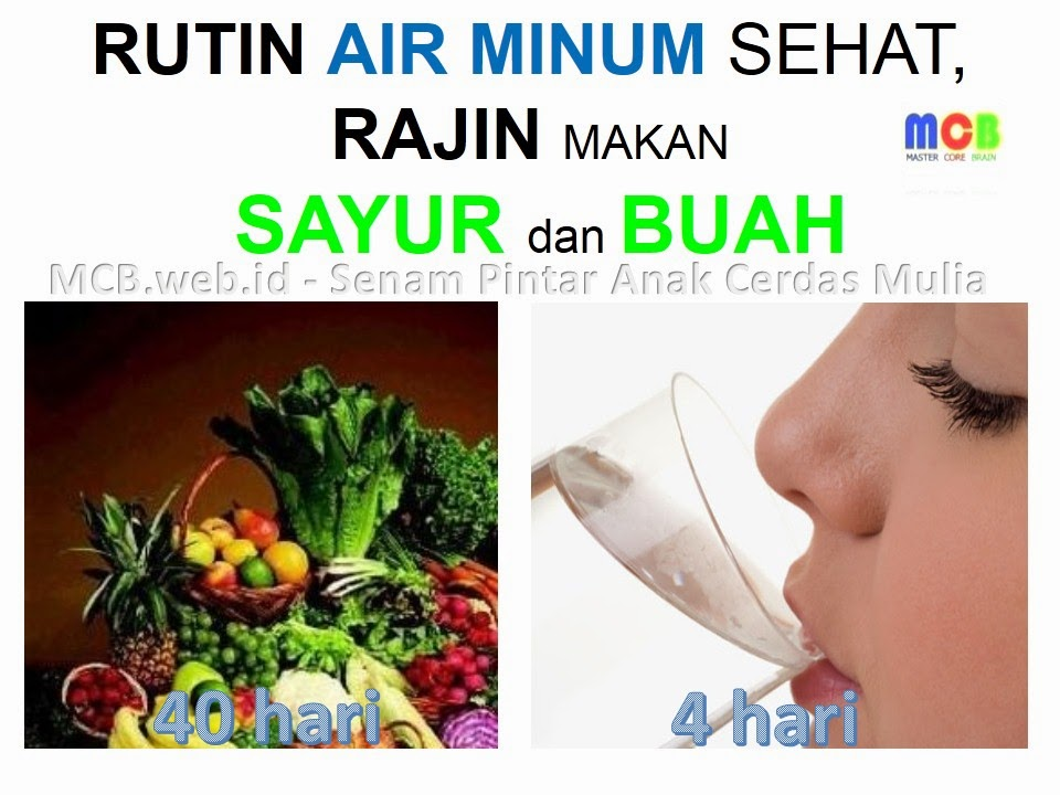 Explaination of Nutri Brain