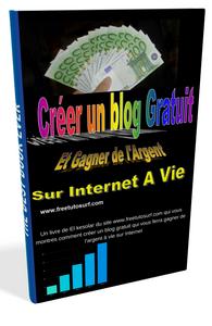 Livre : comment Gagner de l'argent sur internet