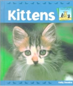 bookcover of Kittens by Kelly Doudna