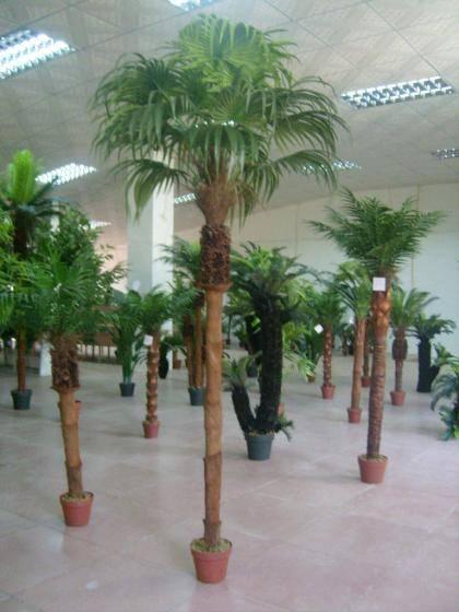 Fotos de plantas artificiais para decora o de casas for Vendita palme da giardino prezzi