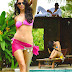 Bolly Celebs Sensuality Unleashed Pics 2013