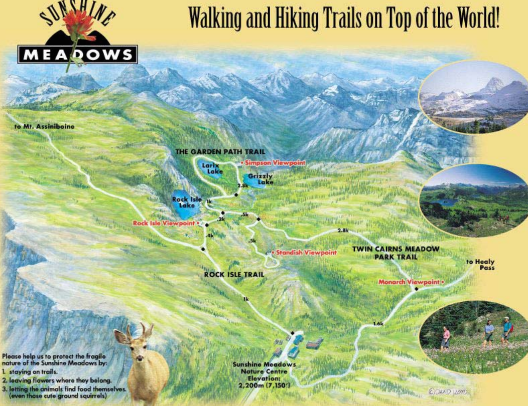 Trail Map Of The Sunshine Meadows Area