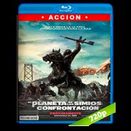 El planeta de los simios: Confrontación (2014) BRRip 720p Audio Dual Latino-Ingles