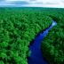 Αμαζόνιος: Ο πνεύμονας της Γης με τα 390 δισεκατομμύρια δέντρα από 16.000 είδη [Εικόνες]