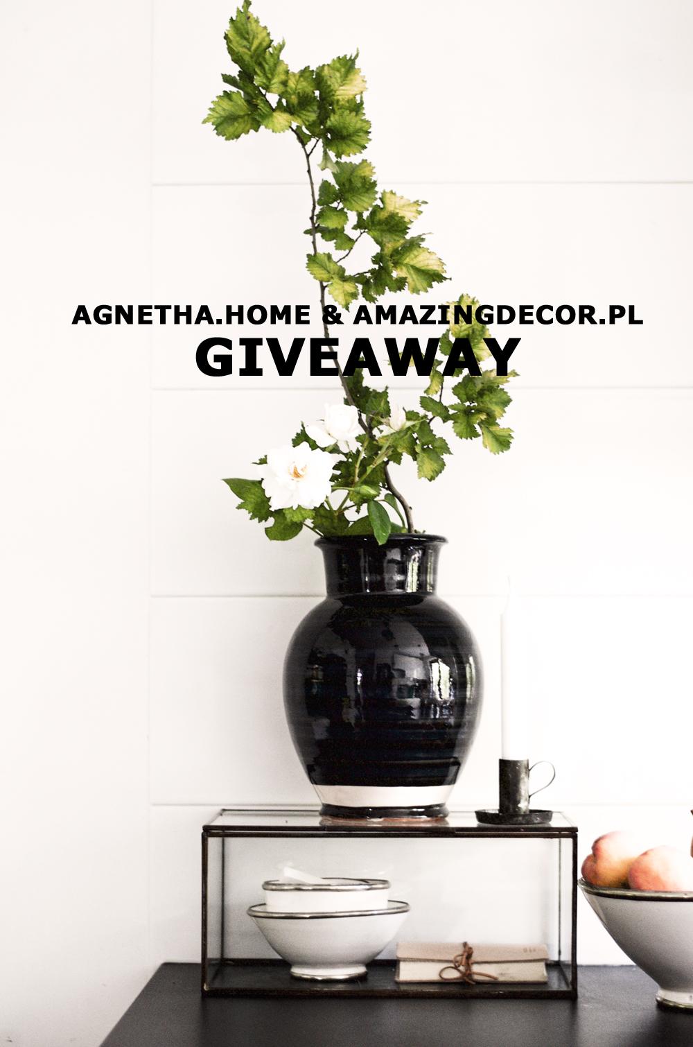 kOnkurs Agnetha home