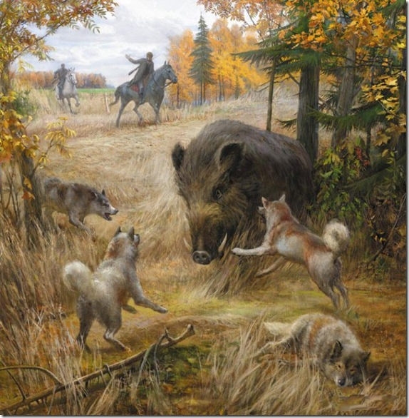 Hunting, Dogs, Boar, Holding at Bay