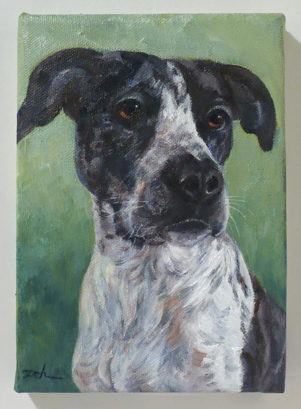 Dog Pet Portrait in Oil on Canvas - the finished painting