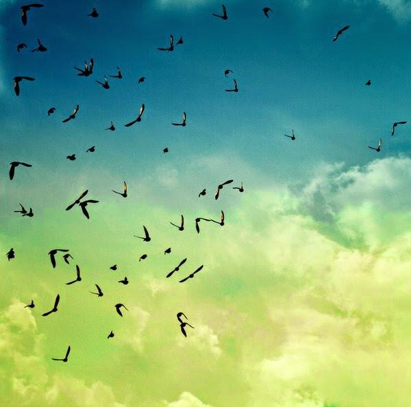 http://www.deviantart.com/#/art/When-shall-I-be-free-131456153?hf=1