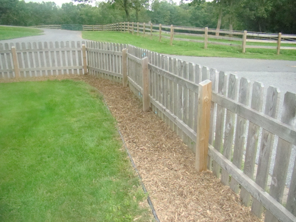 backyard solutions images reverse search