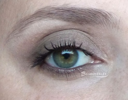 Guerlain Ecrin 4 Couleurs Les Fumes: swatch worn on the eye