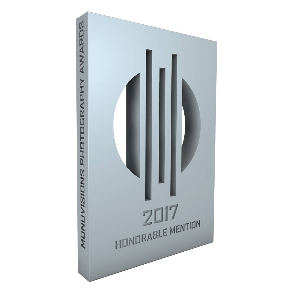 MonoVisions Awards 2017