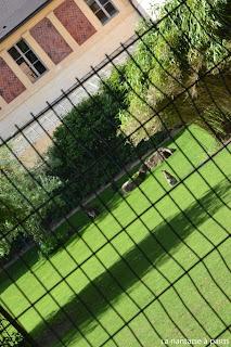 Le Jardin des Plantes by La Nantaise