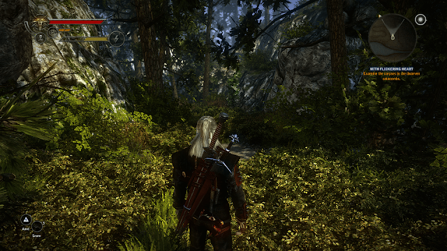 high resolution witcher 2 modded