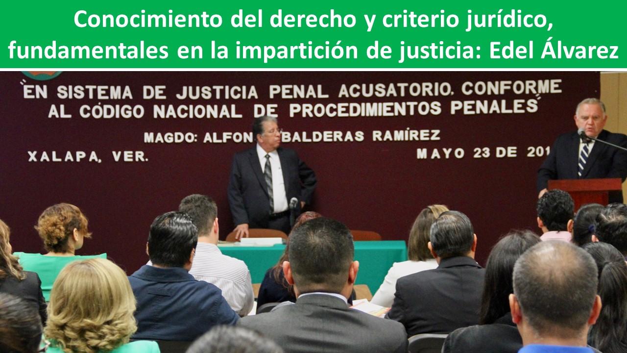 fundamentales en la impartición de justicia: Edel Álvarez