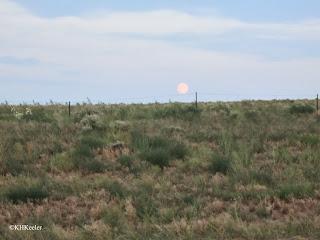 Moon rise over the prairie