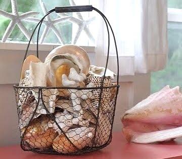 displaying big seashells in wire basket