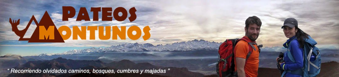 Pateos Montunos