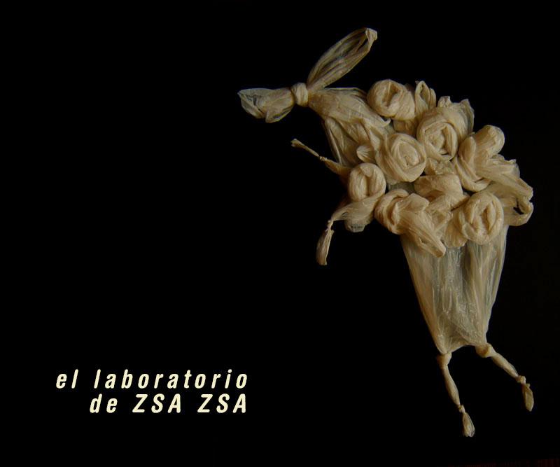 el laboratorio de ZSA ZSA