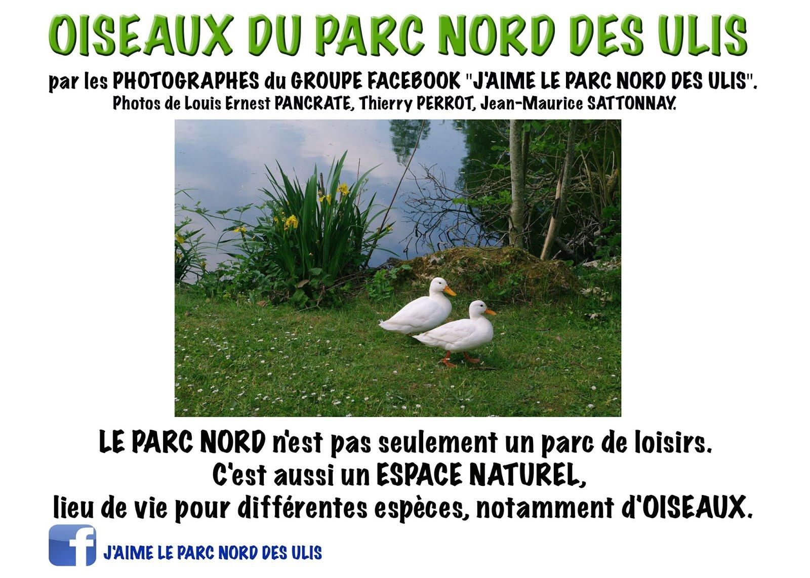 EXPOSITION/ LES OISEAUX DU PARC DES ULIS A LA MEDIATHEQUE DES ULIS jusqu'au 30/6/18.