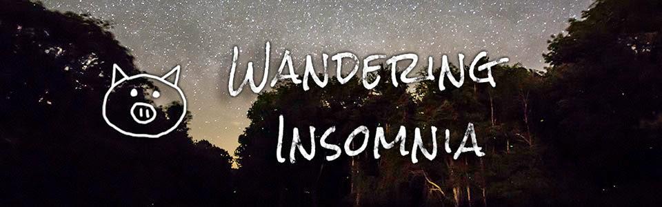 Wandering Insomnia