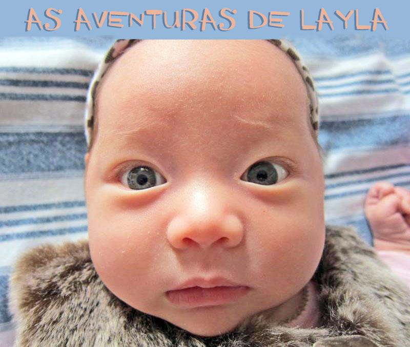 AS AVENTURAS DE LAYLA