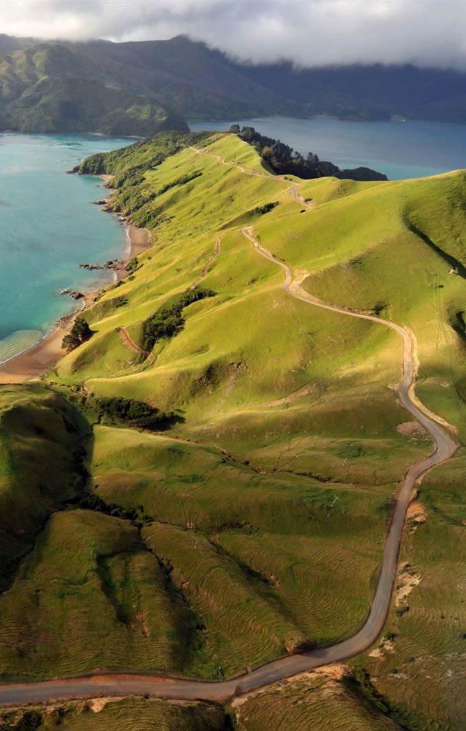 aesthetic discrimination - Marlborough Sounds, South Island, New Zealand