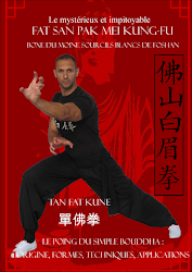 Livre 1: Le mystérieux Fatsan pakmei kung-fu