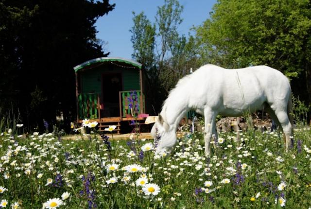 Case su ruote nel paesaggio